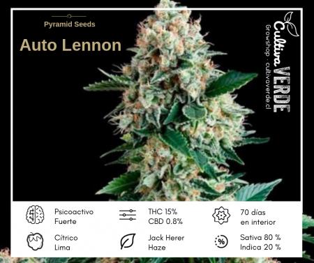 Auto Lennon de Pyramid Seeds